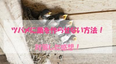 ツバメ,巣を作らせない,対策,方法,感想,効果