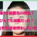 【画像】小嶺麗奈の現在!すっぴんでも綺麗だった!芸能界引退後何をしていたの?